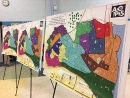 maps of redistricting options
