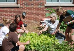 students learning in school garden