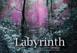 calendar cover wooded scene with pink smoke