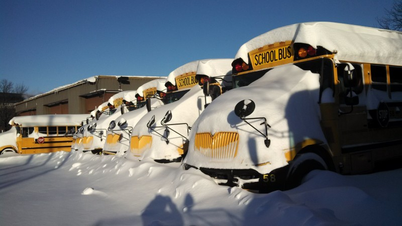Snow covered buses