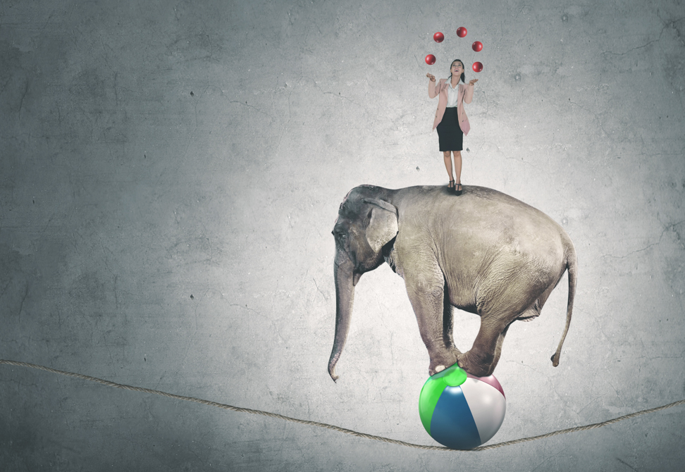 an elephant balances on high wire with woman juggling balls on his back