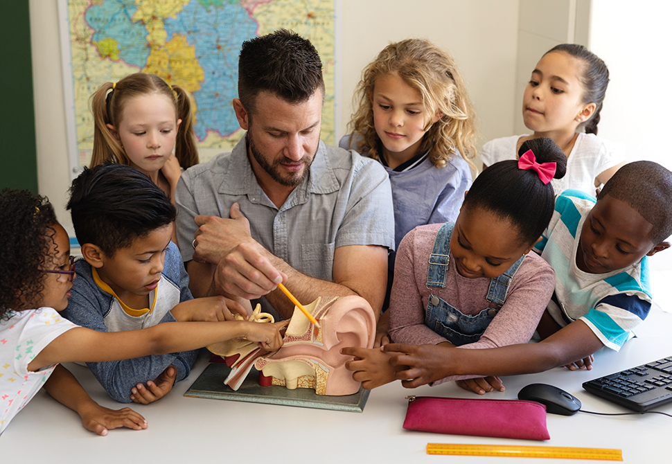 teacher with students examining a model of the inner ear